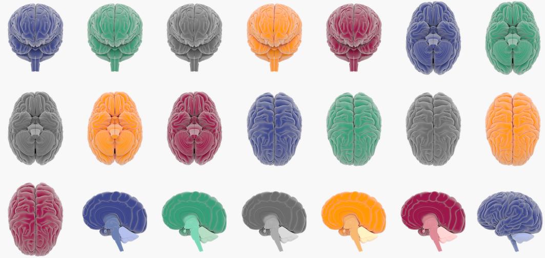 Cuộc chiến thần kinh học